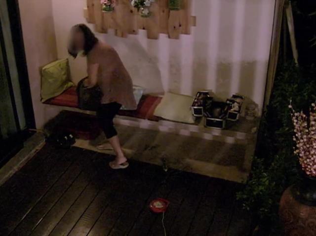Costas și Bogdan, show erotic la Insula iubirii! Lucrurile au luat-o complet razna