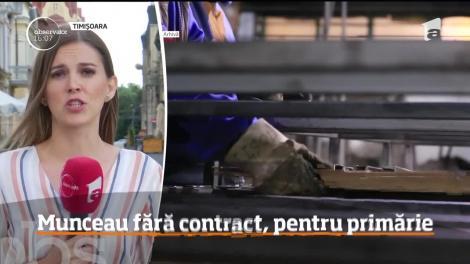 Primăria comunei Mașloc, din judeţul Timiş, e acuzată că ar fi angajat fără acte 13 muncitori zilieri