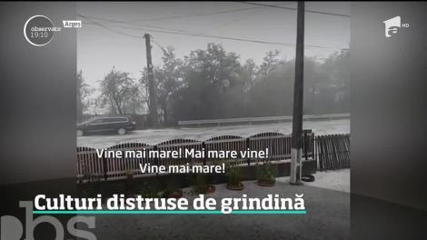 Un fenomen bizar a împărţit în două anotimpuri o localitate din Argeş. După o zi caniculară a plouat cu gheaţă!