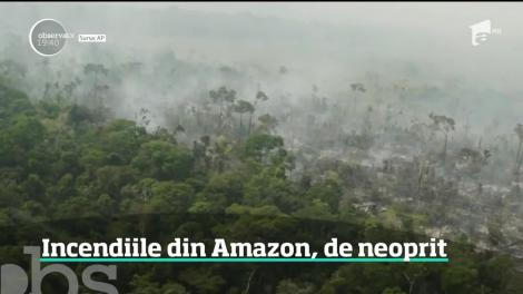 Incendiile din Amazon, de neoprit
