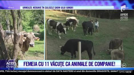 Acces Direct. Sanctuarul văcuţelor, un loc unic în România!