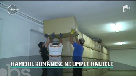 Hameiul românesc ne umple halbele