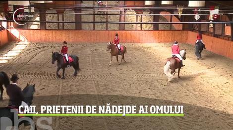Dracula Horse Festival, în Mureş