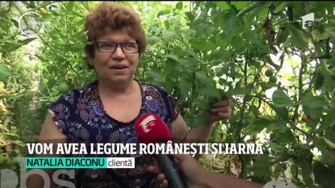Vom găsi legume româneşti pe tarabe până în luna decembrie. Cum se explică recolta târzie de spanac, roşii şi ceapă