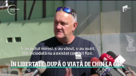 Cele două ursoaice care au trăit în condiţii deplorabile într-un circ din Ucraina au ajuns în România după un drum de aproape două zile