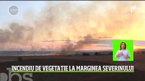 Puternic incendiu de vegetaţie în judeţul Mehedinţi. Salvatorii s-au luptat ore întregi cu focul izbucnit pe câmp, care ameninţa casele din apropiere