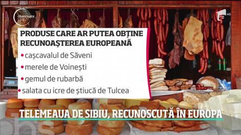 Telemeaua de Sibiu, recunoscută în Europa