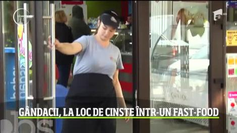 Câţiva gândaci nepoftiţi au pus lacătul pe uşa unui restaurant din Galaţi, ce aparţine unui important lanţ naţional de tip fast-food