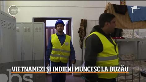 """Muncitori din India și Vietnam, aduși pe șantierele din România: """"Dacă ni s-ar permite să ne aducem familiile aici, am fi foarte norocoşi!"""""""