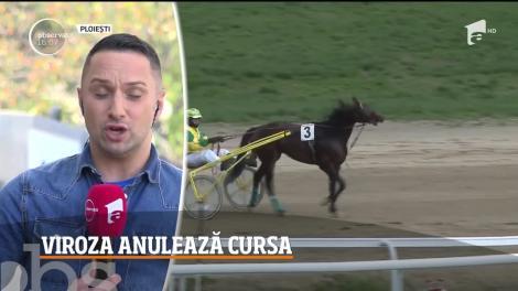Cursa programată în acest weekend la Hipodromul din Ploieşti a fost anulată, din cauză că mulţi cai s-au îmbolnăvit