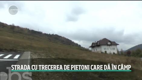 Drumul ce duce nicăieri. O investiție de zeci de mii de euro a autorităților din Piatra Neamț. Ce glume fac localnicii și ce explicații au constructorii?