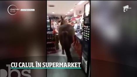 Imagine pur românească într-un supermarket din Buzău! Un cal se plimbă printre rafturi