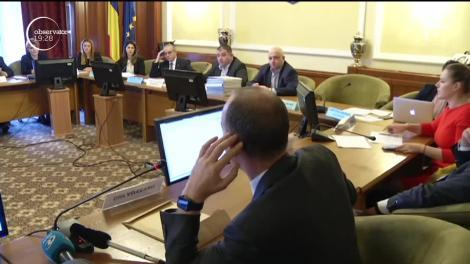 Noul ministru al Muncii, Violeta Alexandru, a prezentat soluţiile de creştere a salariului minim