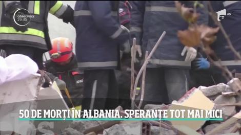 Trei câini din România ajută la salvarea victimelor din Albania