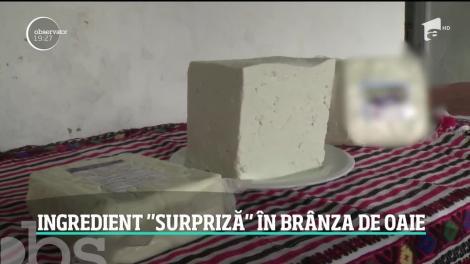 Bălegarul, ingredientul surpriză din brânza de oaie! Producători apelează la acest truc murdar pentru a obţine un gust înşelător