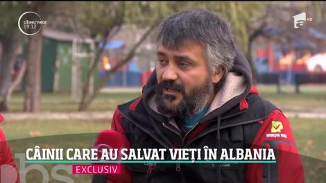 Billy şi Challapa, câinii care au salvat vieţi în Albania