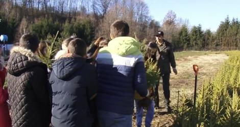 Prichindeii învață cum să prețuiască natura! Copiii de la o şcoală din Argeş au primit de la silvicultori spre adopţie câte un pui de brad pe care să-l crească