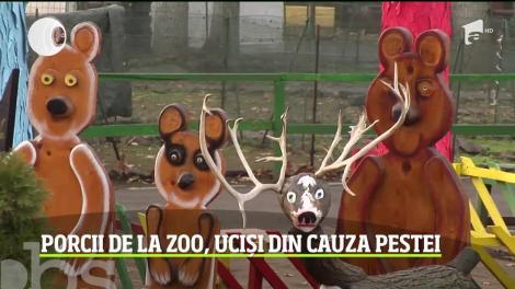 În zi de Ignat, zeci de animale au fost sacrificate la grădina Zoologică din Brăila