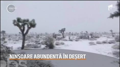 A nins în deșert, în cea de-a doua zi de Crăciun! Imagini uluitoare! VIDEO
