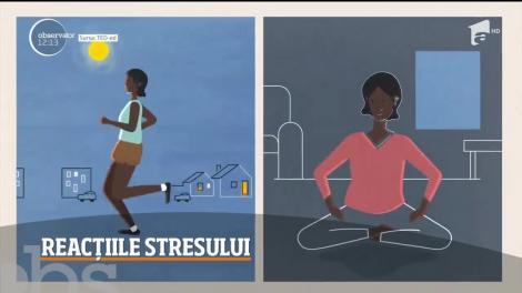 Ce este stresul și cum se manifestă. Iată ce ne recomandă specialiștii