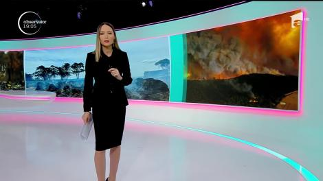 Australia, un paradis redus la cenușă! Incendiile care au topit totul pe o suprafață cât jumătate din România sunt cele mai mari din istorie