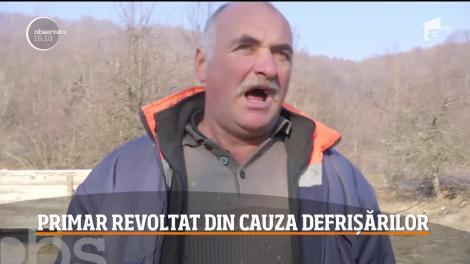 Un primar din Gorj le-a pus gând rău hoţilor de lemne! Vrea să strângă semnături ca să stopeze tăierile masive de pădure