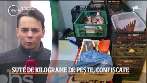 Sute de kilograme de peşte, confiscate în Bucureşti
