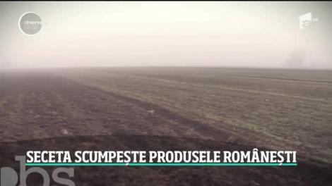 Lipsa zăpezii scumpește produsele românești