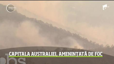 Incendiile de vegetaţie din Australia iau din nou amploare