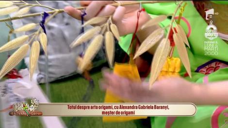 Totul despre arta origami, cu Alexandra Gabriela Baranyi