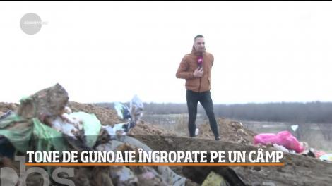 Mormane de gunoaie au fost îngropate pe un câmp dintr-o localitate prahoveană!