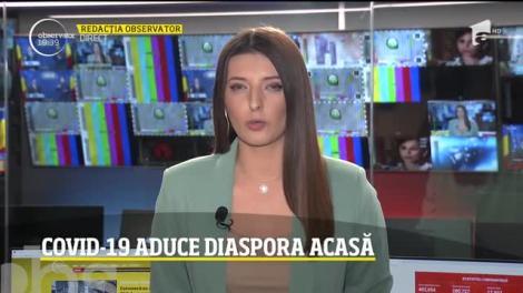 COVID-19 aduce diaspora acasă. 800 de mii de români s-au întors în ţară