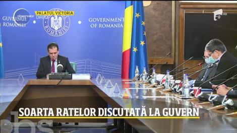 Soarta ratelor, discutată la Guvern. Noile condiții în care românii își pot amâna datoriile până la finalul anului