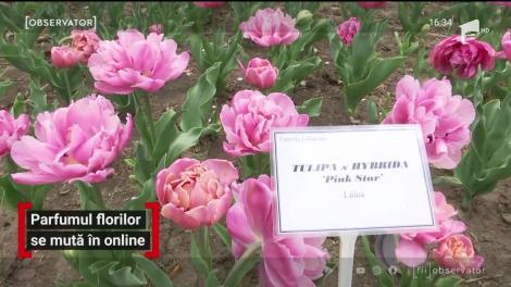 Parfumul florilor se mută în online