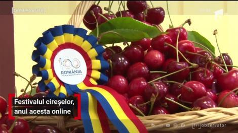 Festivalul cireșelor din comuna prahoveană Păuleşti se sărbătorește online
