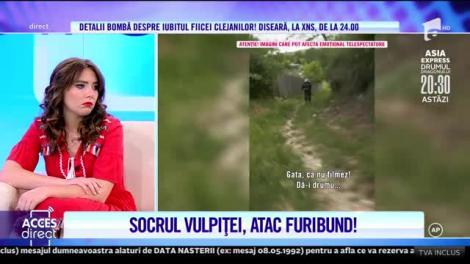 Revedere cu scandal în casa Stegaru! Vio și Vulpița, alungați cu pietre din Blăgeșți! |Video