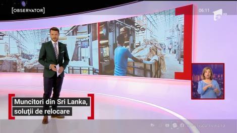 Muncitori din Sri Lanka, soluții de relocare. Ce asigurări le-a oferit ministrul Muncii, Violeta Alexandru