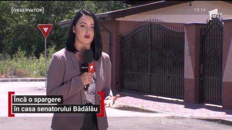 Furt cu repetiție, în familia senatorului Nicolae Bădălău