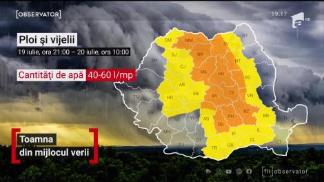 Ploile torențiale au făcut ravagii în țară. Puhoaiele au intrat în curți și-n case, iar copacii smulşi de vânt au blocat drumuri