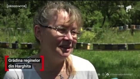 În Hunedoara o familie de apicultori a creat Grădina Reginelor
