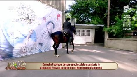 Circul Metropolitan București, spectacole de excepție în aer liber
