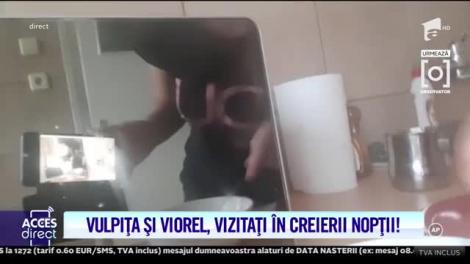 """Vulpița Veronica, însărcinată? Viorel aruncă bomba: """"O să vină și un bebe!""""  Video"""