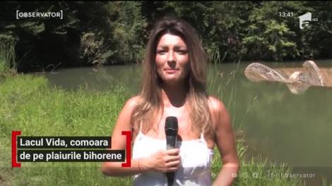 Peisaj de poveste în România. În judeţul Bihor se află lacul de acumulare Vida