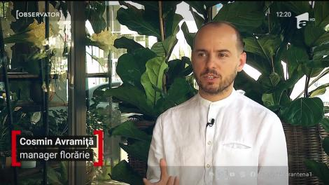Plantele care înfrumusețează casele românilor, în pandemie