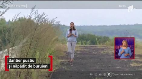 Șantier pustiu și năpădit de buruieni în Târgu Jiu. Centura de nici 20 de kilometri ar fi trebuit să fie gata de patru ani