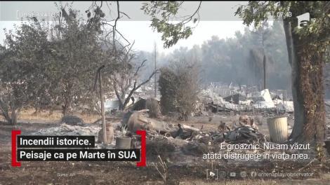 Incendiile de vegetaţie au devastat Coasta de Vest a Statelor Unite