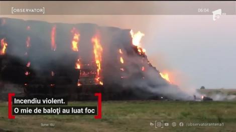 Un incendiu puternic la câţiva kilometri de Arad