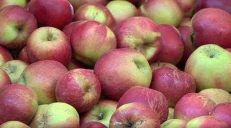 Fructele româneşti vor fi mai scumpe toamna asta