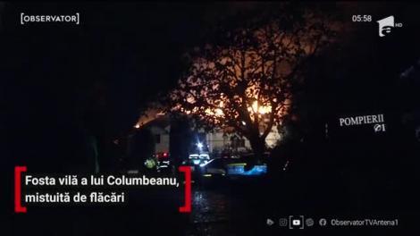 Fosta vilă a lui Irinel Columbeanu, mistuită de flăcări