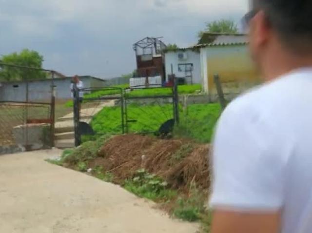 Poftiți la circ 2020, ediția 10. Liviu Vârciu și Anda Adam, război cu apă în grădina cu mentă! Cum s-a răzbunat diva